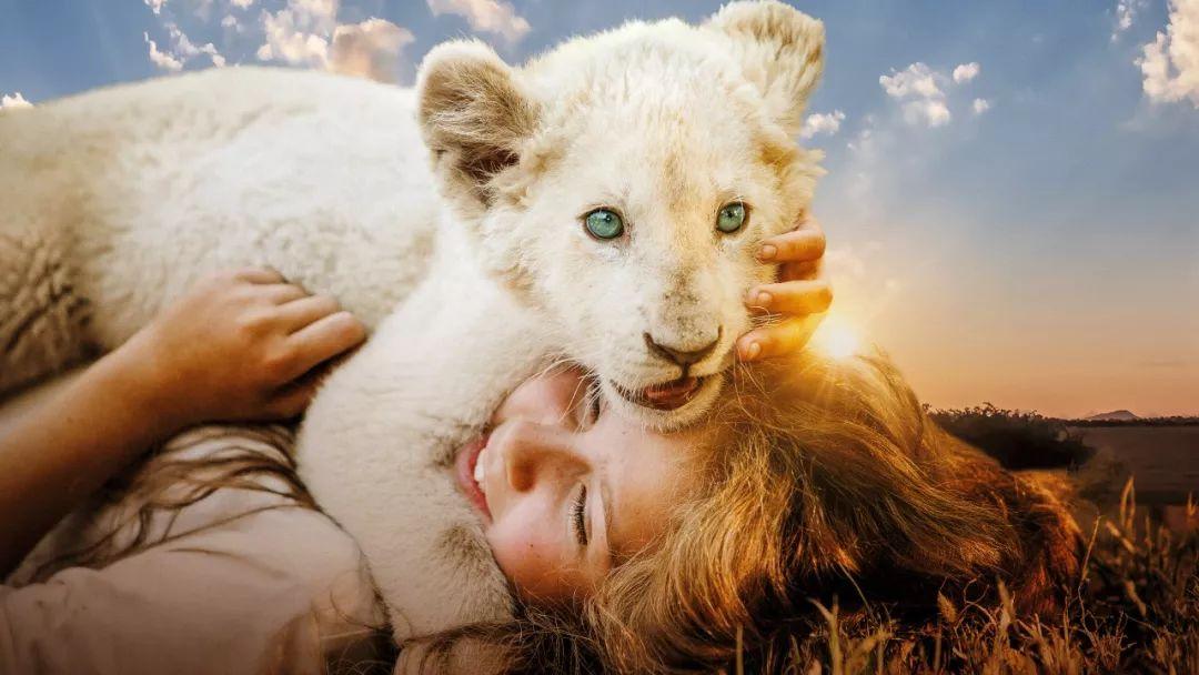 影片讲述了少女米娅和稀有品种白狮查理互相陪伴,共同成长的故事