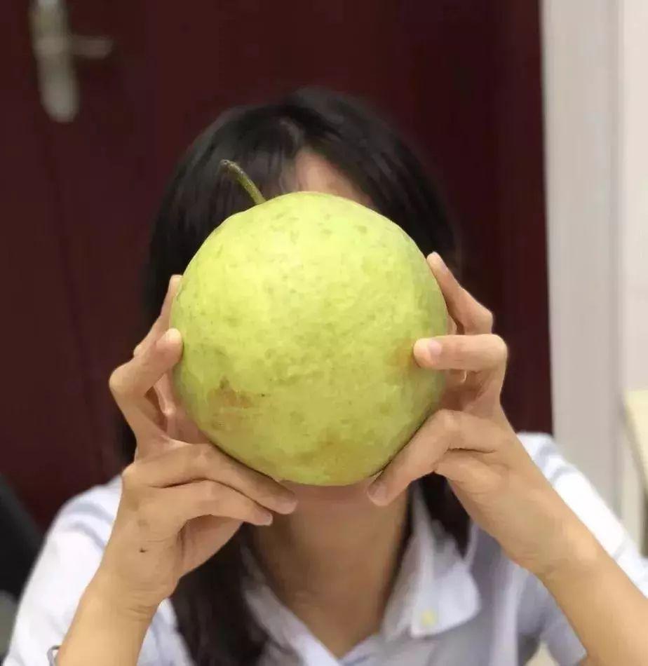 不留碎发的西瓜头编发,跟月亮一样圆的编法了解下!_网易视频