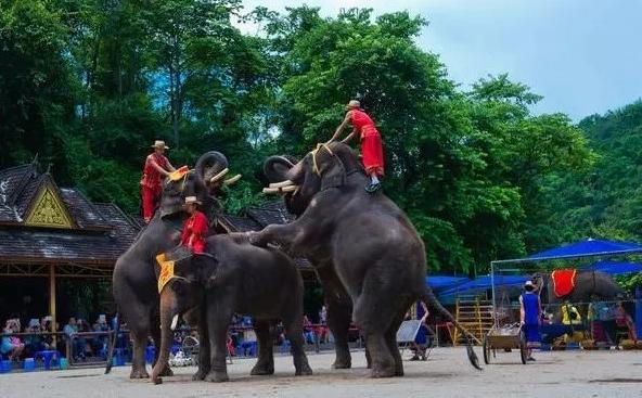 谈去年到缅甸小勐拉的一段难忘的愉快之旅