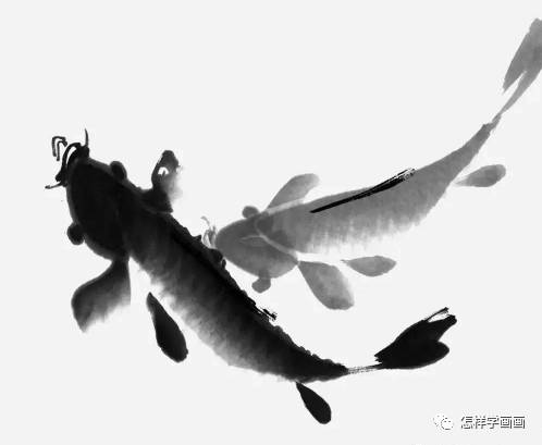 国画 写意鲤鱼画法详解