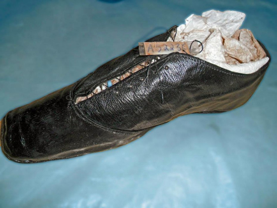 一对父子意外挖出埋在地下130年的沉船,古物如新令人大开眼界