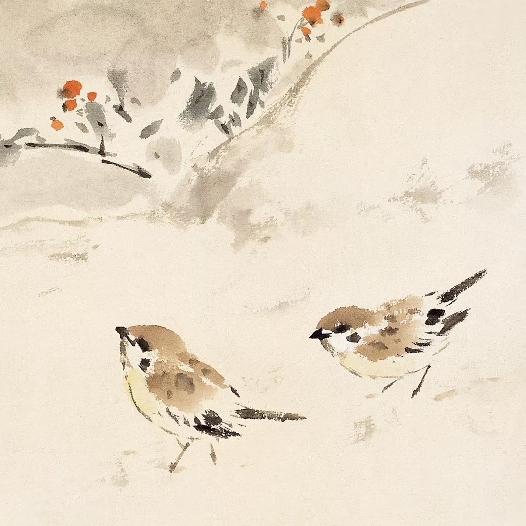 100张禽鸟图,值得收藏学习