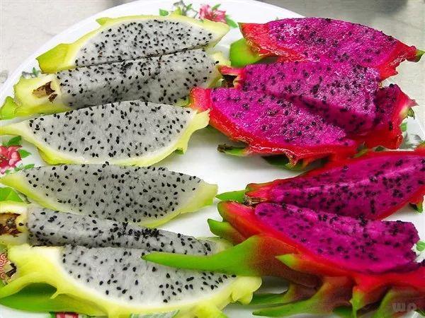 秋季吃这些应季水果,刷脂v水果事半功倍人a水果价格减肥茶图片