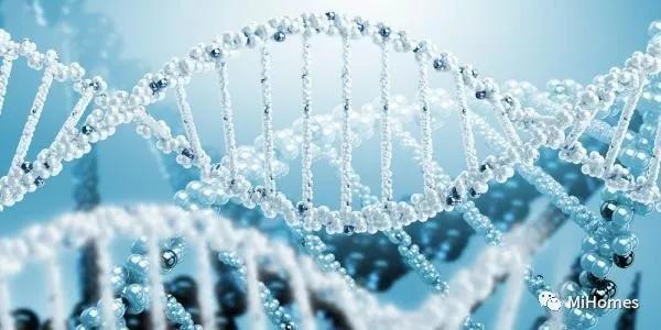 麻省理工科学家发现新的抗癌分子,能够有效防止癌症的恶化