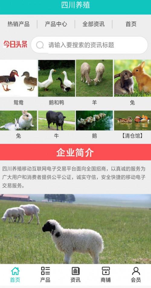 """""""智慧移动app""""带动四川养殖探索出行业新天地"""