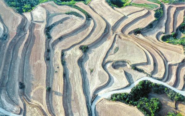 垣曲完成坡改梯水土保持工程7万亩
