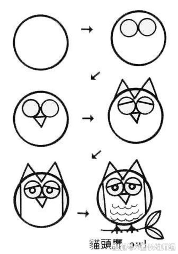 猫头鹰简笔画步骤 画法,猫头鹰画画大全 5068
