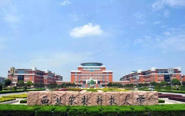 "<b>中国4所985大学排名虽""垫底"",但实力超群,考生想捡漏可不易</b>"