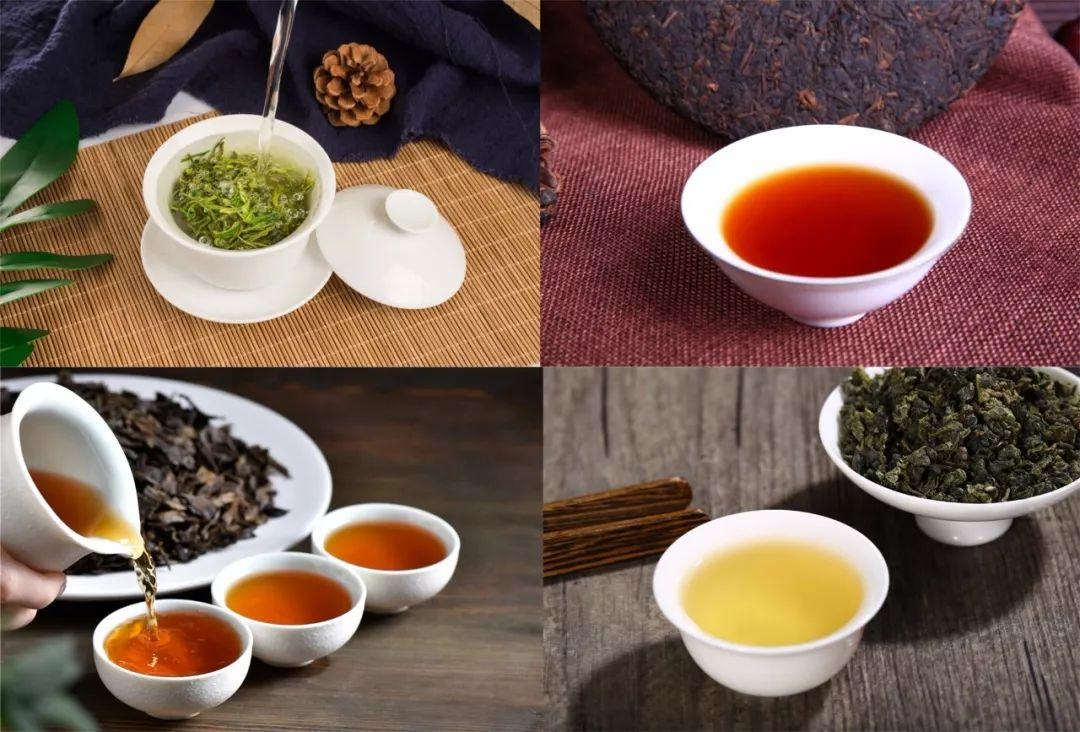 绿茶、乌龙茶、红茶、普洱茶茶类功效大PK!