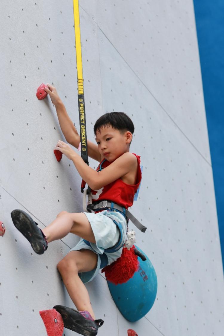 广东省第十二届攀岩锦标赛落幕,东莞市攀岩队勇夺6冠成大赢家