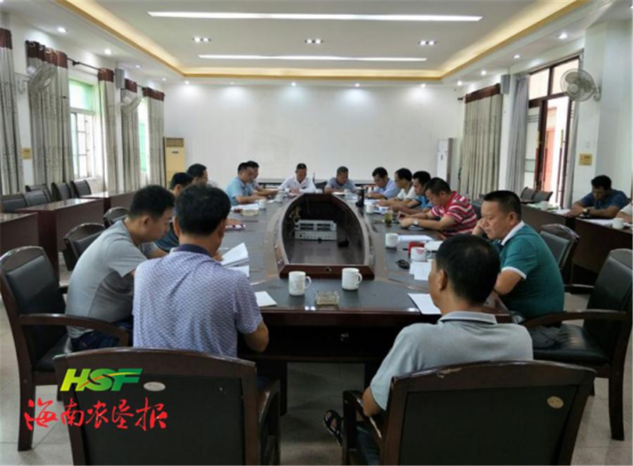 岭门农场公司召开椰子种植项目工作部署会