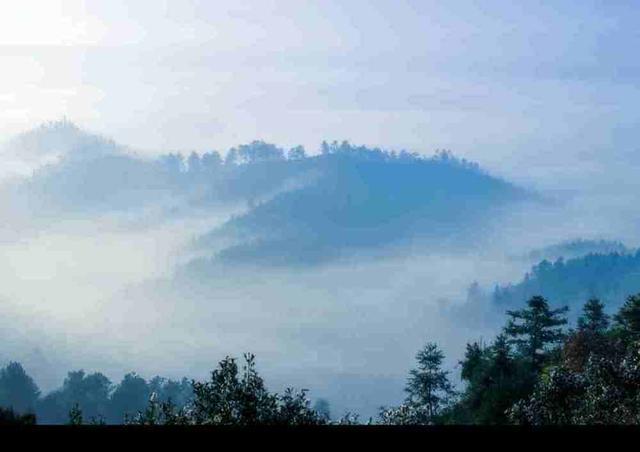 醉红自知-开问精选:《那些轻柔飘摇的雾》