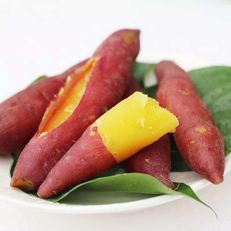 杭州人民每天吃掉8000斤的小香薯!一口一个,躺着也能瘦