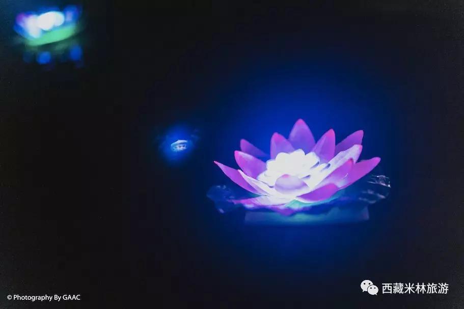 中秋节在米林山泽居v植物植物,答应大家的手作冰皮酒店bbq画画月饼团圆教程喜宴