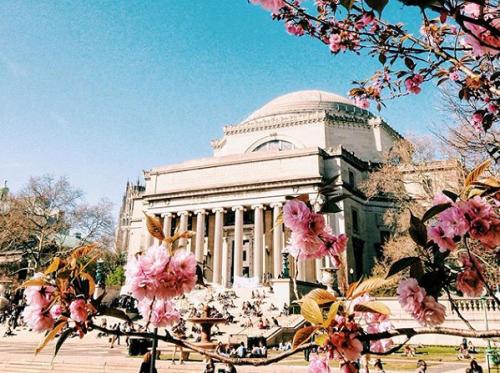 全球20所盛产富豪大学,美国占据17所,哈佛依旧是全球第一!