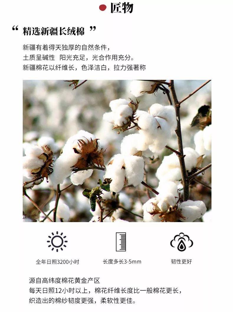 最新日本艺术_毛巾美术馆   源自日本的毛巾艺术