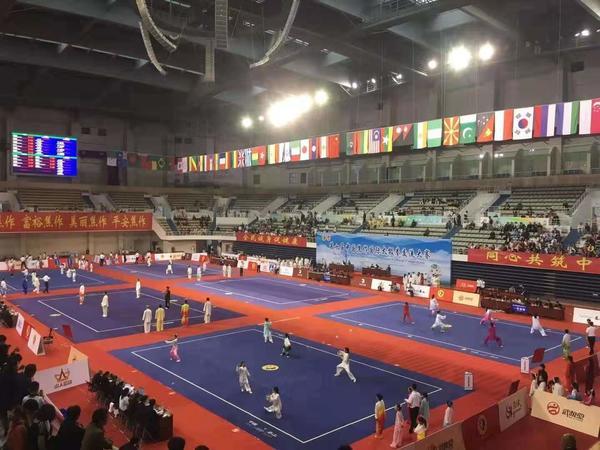 厉害!焦作这场太极拳国际大赛,郑州九岁娃勇夺两金