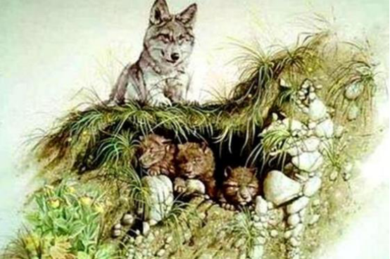 图上几只狼找不够5只是老花眼!你能找出几只