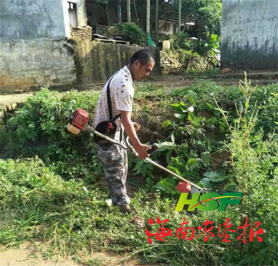 红昇农场公司东红基地管理中心开展环境卫生整治活动