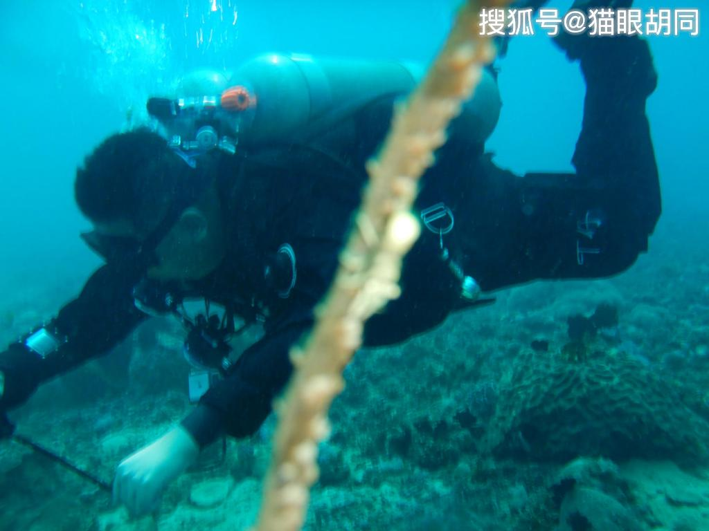 男子菲律宾潜水多次偷偷关掉多名潜友气瓶:只是开玩笑    网友:起诉他!
