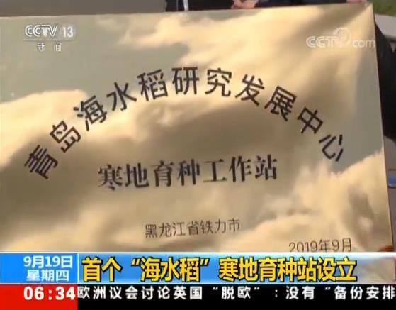 "<b>袁隆平设首个""海水稻""寒地育种站,可满足东北水稻种植需求</b>"