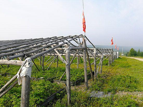 前哨林场:传承红色基因 党建引领发展