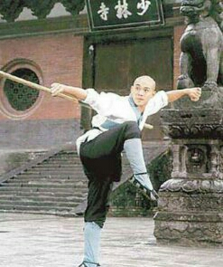 56岁李连杰现身太极村,吃土豆配咸菜,网友:太接地气了