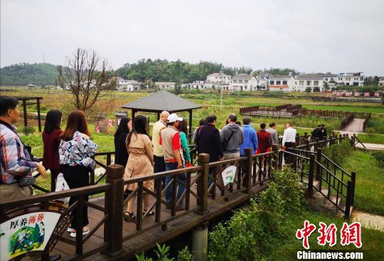 海外华文媒体走进北川点赞羌城新变化