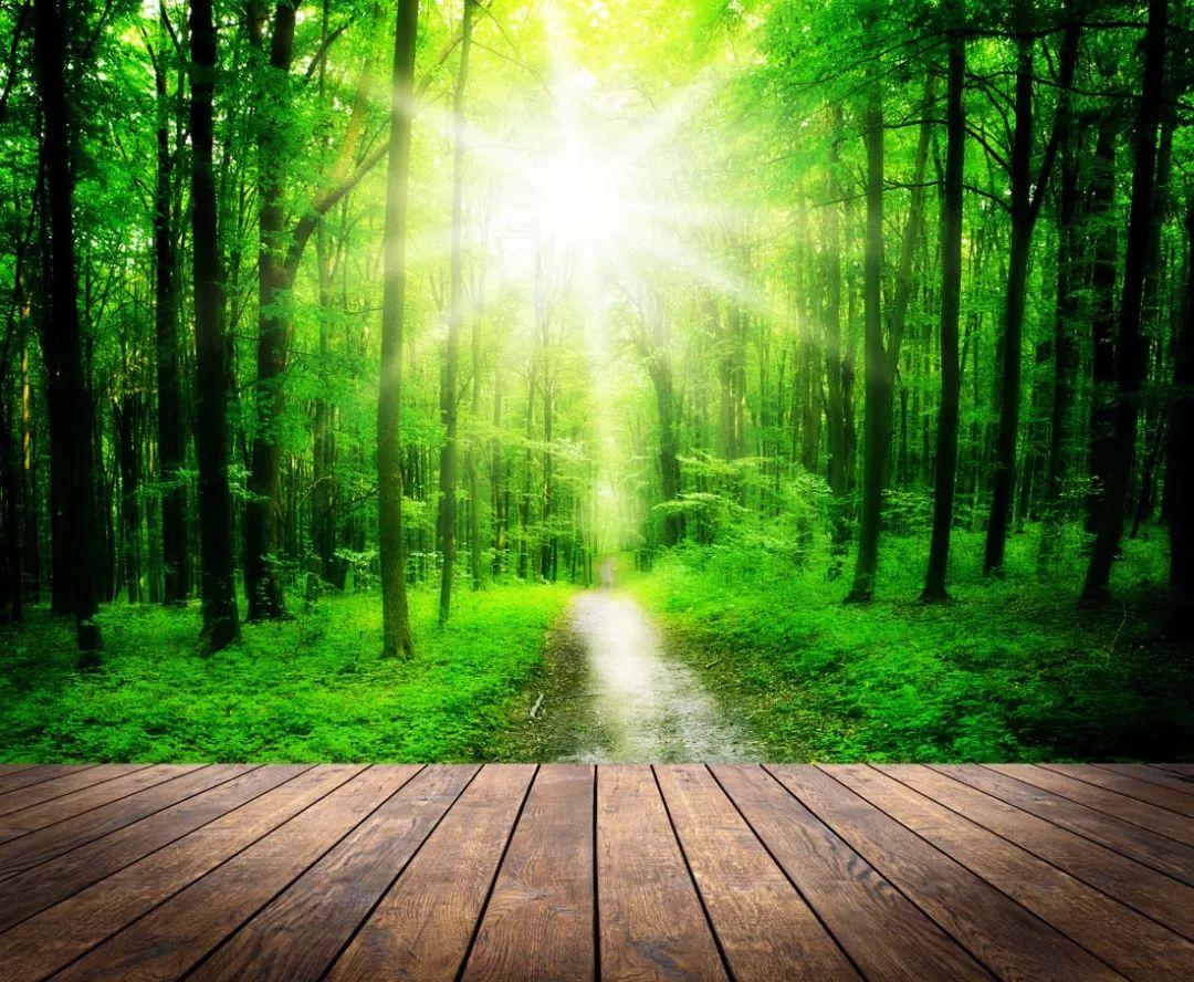 把每一天活成一束光,人生就是太阳