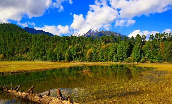 西藏这三个特殊的县,虽地处高海拔,但它的美完全没