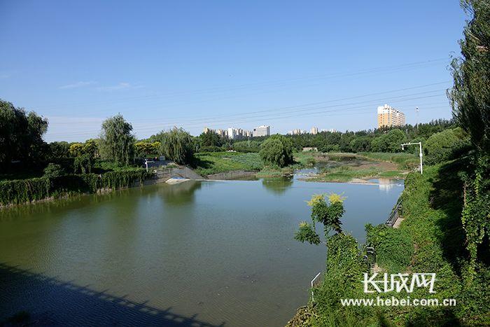 冶河灌区启动秋季生态补水 为石家庄市环城水系提供清洁水源