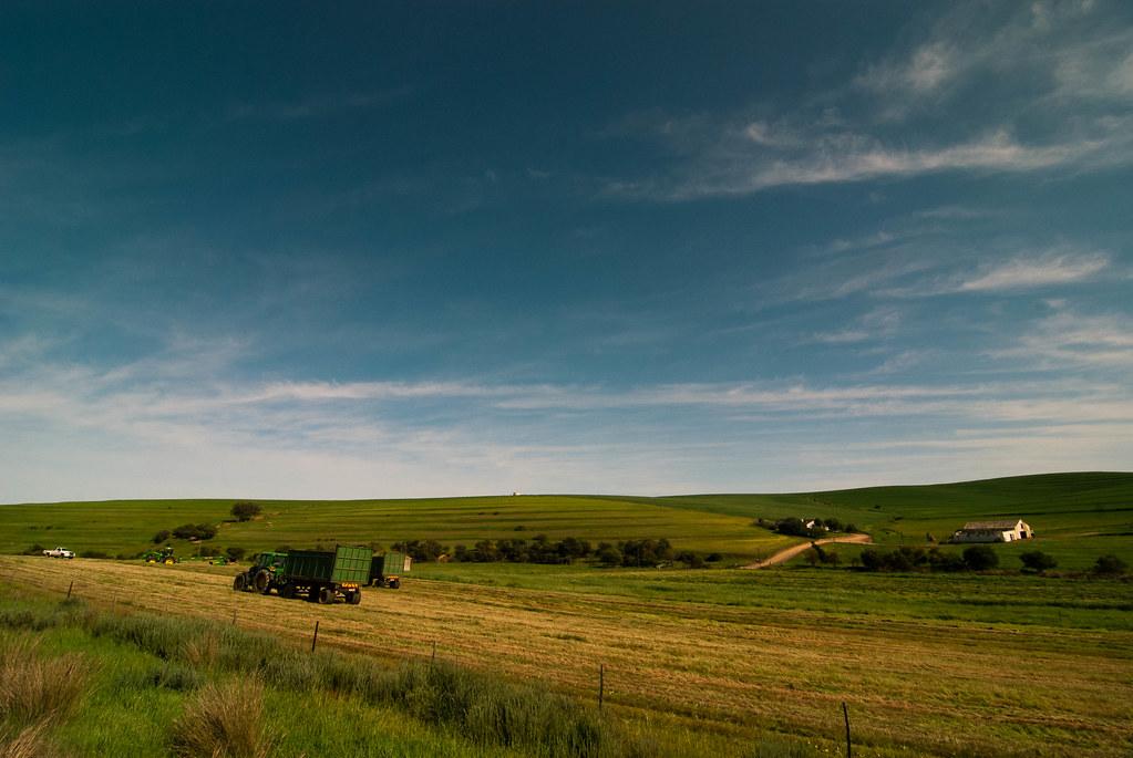 每分钟发放百万美元 农业补贴正在摧毁地球