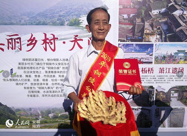 喜迎农民丰收节铜陵白姜文化周启动