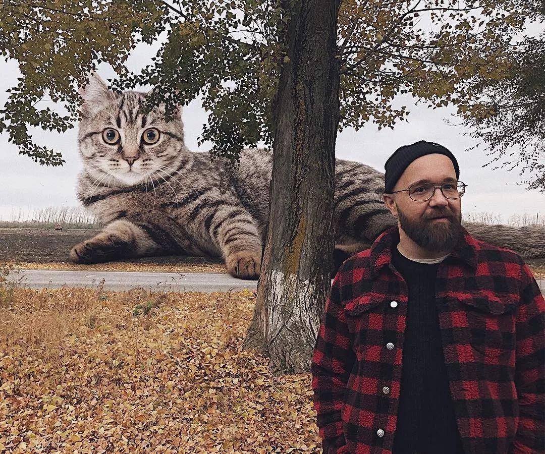 五月撸全色影院_他养了一只3米高的猫,私密照曝光后,10万人云撸猫:撸猫一时爽,一直撸