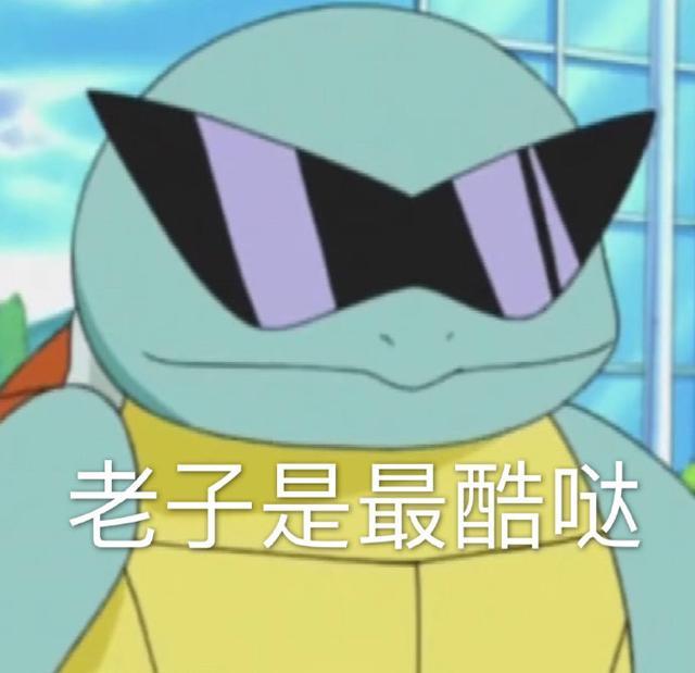 杰尼龟表情包合集|老子是最酷哒