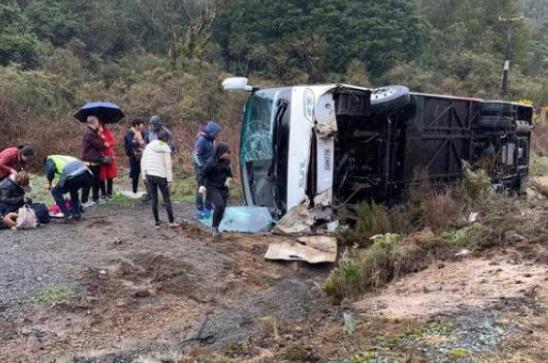 载中国游客大巴新西兰翻车事故:司机被控鲁莽驾驶