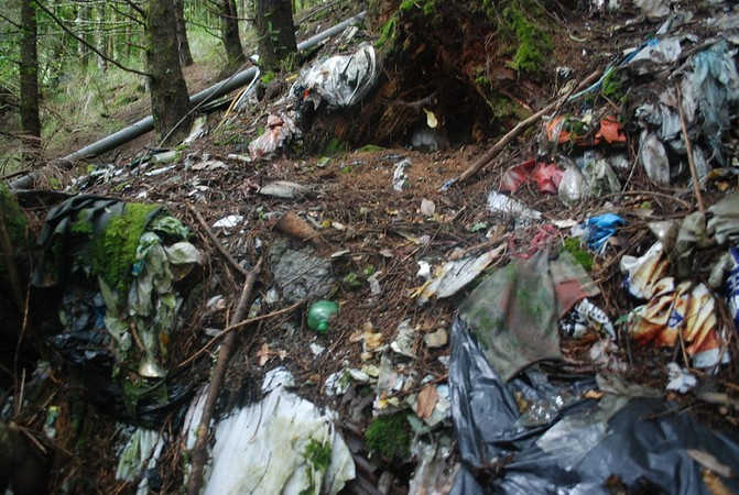 研究证实:土壤中的微塑料影响蚯蚓生存