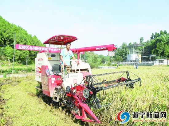 """<b>拱市村乡村振兴现代农业科技行动计划项目迎来""""考核""""</b>"""