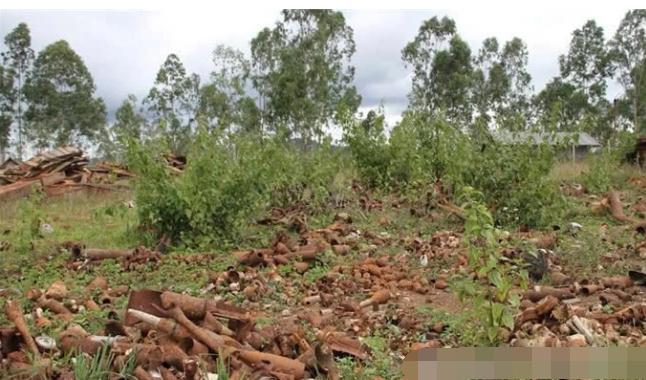 世界上最可怜的国家,埋了8000万颗炸弹,土地都无法耕种