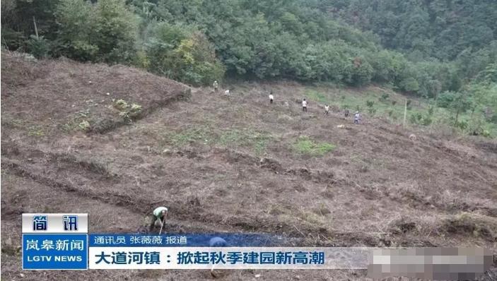 大道河镇:掀起秋季建园新高潮