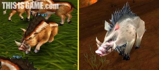魔兽世界野猪之魂图片