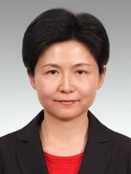 """""""70后""""女总裁任上海长宁区委副书记"""