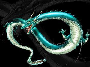 """""""三峡水怪""""身份惊动专家,预测是巨型蛇,工作人员打捞后乐坏了"""