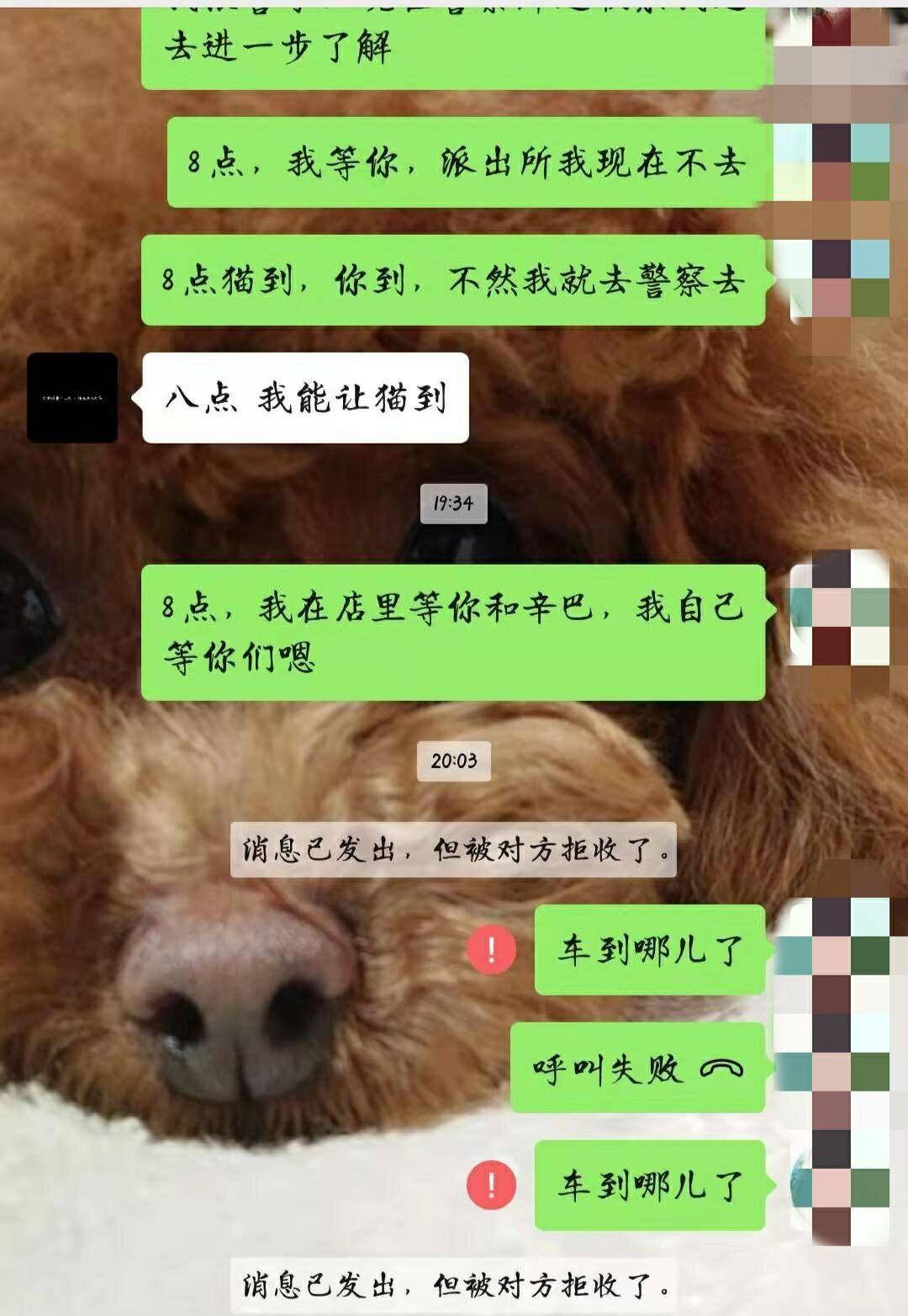 http://www.zgcg360.com/xiebaopeishi/468073.html