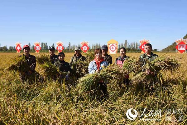 黑龙江垦区绥滨农场举办水稻人工收割劳动竞赛迎庆中国农民丰收节