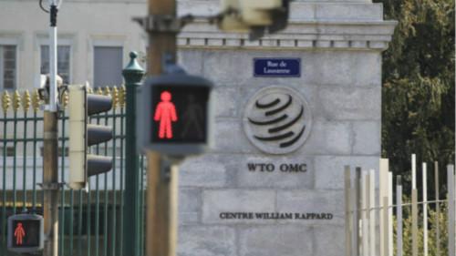 美国立场毫无松动迹象,WTO能够因他离职而瘫痪