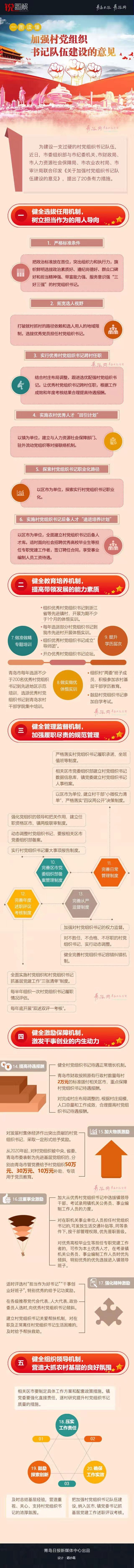 一图读懂〡青岛出台20条意见加强村党组织书记队伍建设