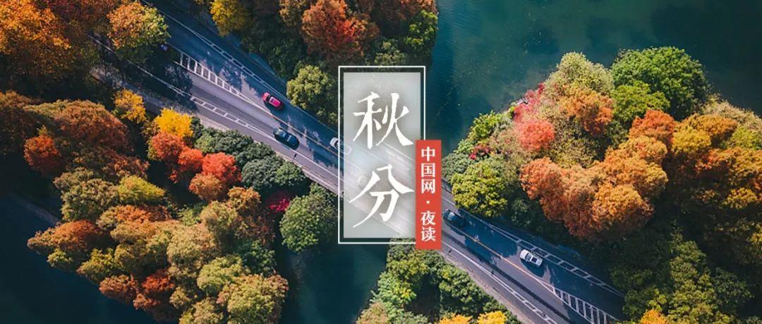 中国梦蓝樽52度