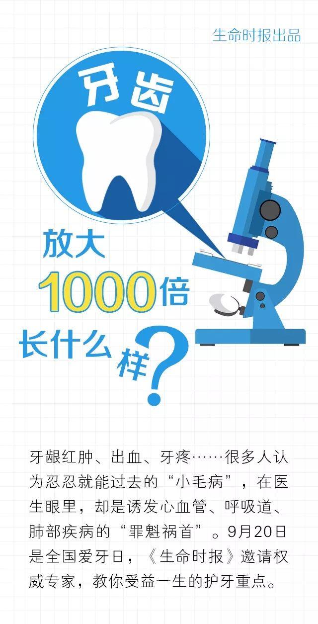 【提醒】牙齒放大1000倍長啥樣?看完我決定認真刷牙了