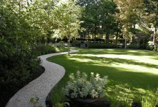 种上草,栽上树,就是景观绿化了